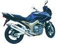 YAMAHA BREEZE